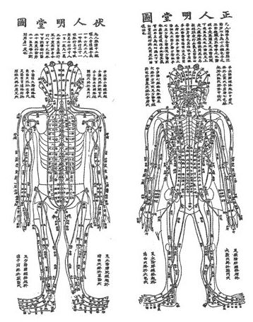 Diagram of Qi force points in human body for acupuncture and moxibustion therapy treatment in inner Melbourne